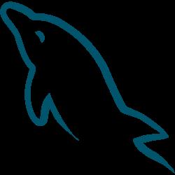 mySQL Webentwicklung Webtechnologie orcas Stralsund